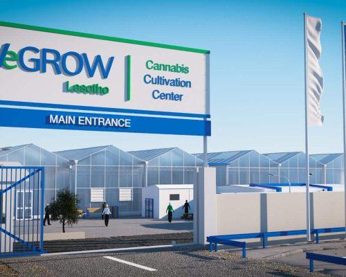 wegrow Cannabis cultivation facility